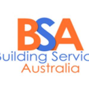 BSA (2)
